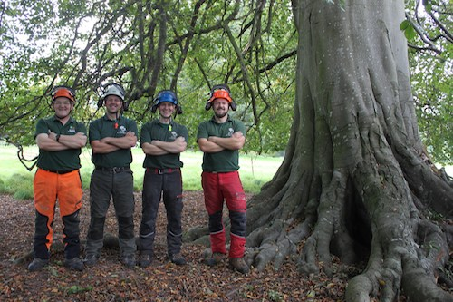 D L Corran Tree Surgeons Abergavenny - About Us
