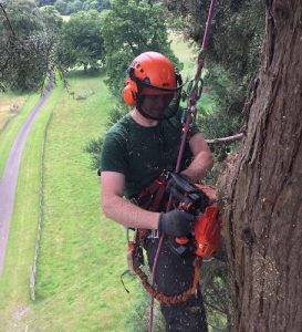 DL Corran Tree Surgery Services Abergavenny