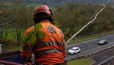 Motorway Maintenance D L Corran Tree Surgeons Monmouth
